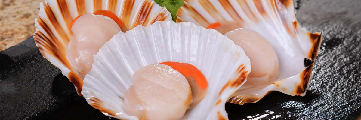 In shell King Scallops freshly sourced from British waters